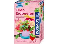 Feen-Erdbeeren